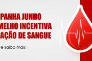Junho Vermelho: Doação de sangue sofre impactos negativos com a pandemia. Saiba como doar